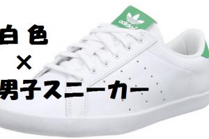 【白スニーカー】2016高校・大学生男子にオススメランキング【靴】【10000円以内】【女の子受け】