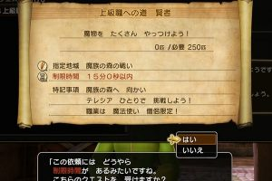 【ドラゴンクエストヒーローズ2】賢者になる方法虎よ!翼よ!【上級職への道】