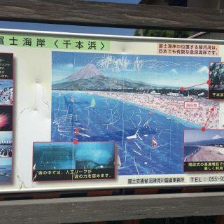 【ポケモンGO】千本浜周辺に出現するレアポケモン一覧|静岡よく出る|千本公園|ラプラス