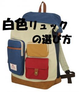 【リュックサック】2019年 高校・大学生男子にオススメランキング│5000円以内│白色