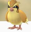 【ポケモンGO】ポッポゲットだぜ #PokemonGO【インストール】【ダウンロード】
