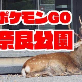 【ポケモンGO】奈良公園周辺に出現するポケモン一覧 ミニリュウの巣