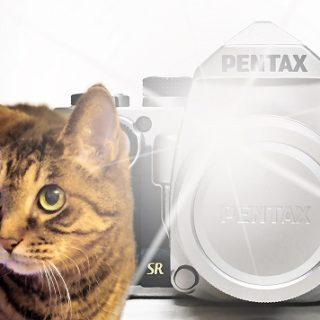 ゴンタアマの紹介│京都PENTAXを使うアマチュアカメラマンのサイト